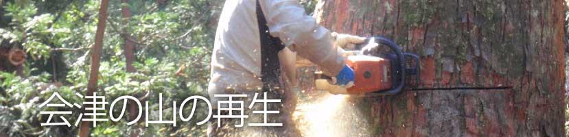 会津の山の再生